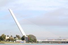 Femenino regata Sevilla - Betis13