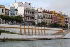 Femenino regata Sevilla - Betis5