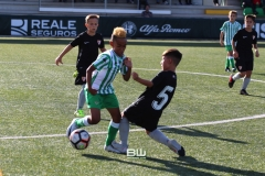 Benjamin C - Betis - Sevilla 53