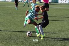 Benjamin C - Betis - Sevilla 56