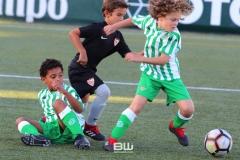 aBenjamin C - Betis - Sevilla 242