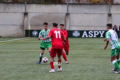 J15 Betis Dh - Sevilla 110