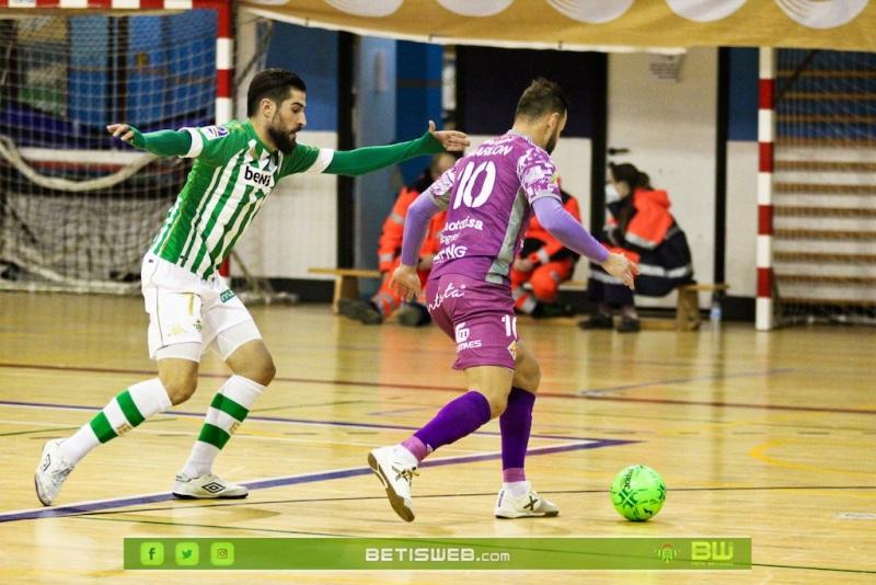 J16-Real-Betis-Futsal-vs-Palma-Futsal256