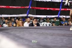 Boxeo Ratón Perez 8-06-19 384