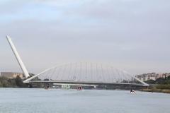 Femenino regata Sevilla - Betis11